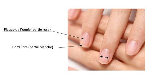 mesurer ses ongles-1.jpg