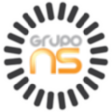 logo ns.png