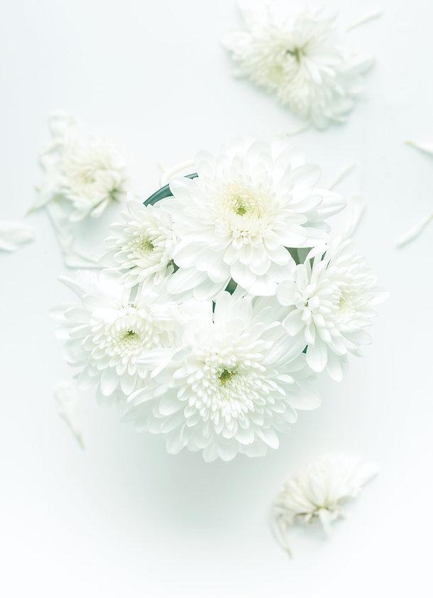 white flowers_edited.jpg