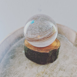 Medium snow globe