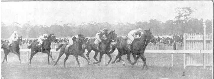1919 Bullengarook.jpg