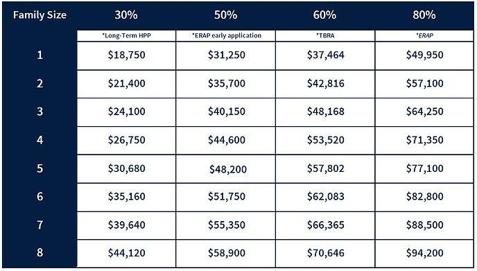 AMI 2020 Chart for web 50%.JPG