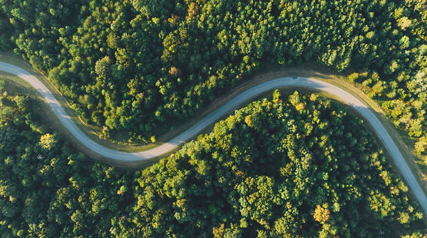 Green road.jpeg
