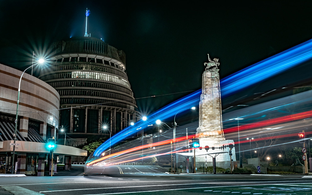 Parliament and Cenotaph, by Michael Harris