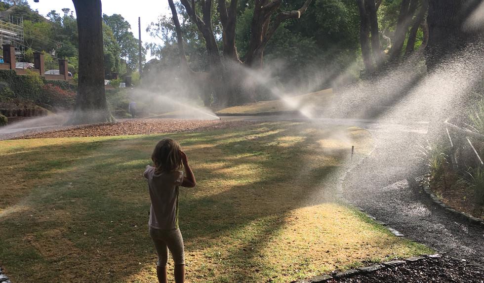 Sprinklers by Susannah Poole