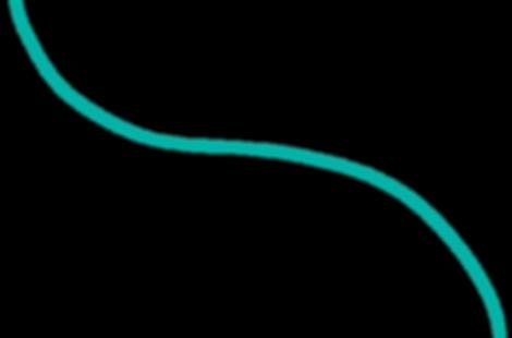 Line 2-01.png
