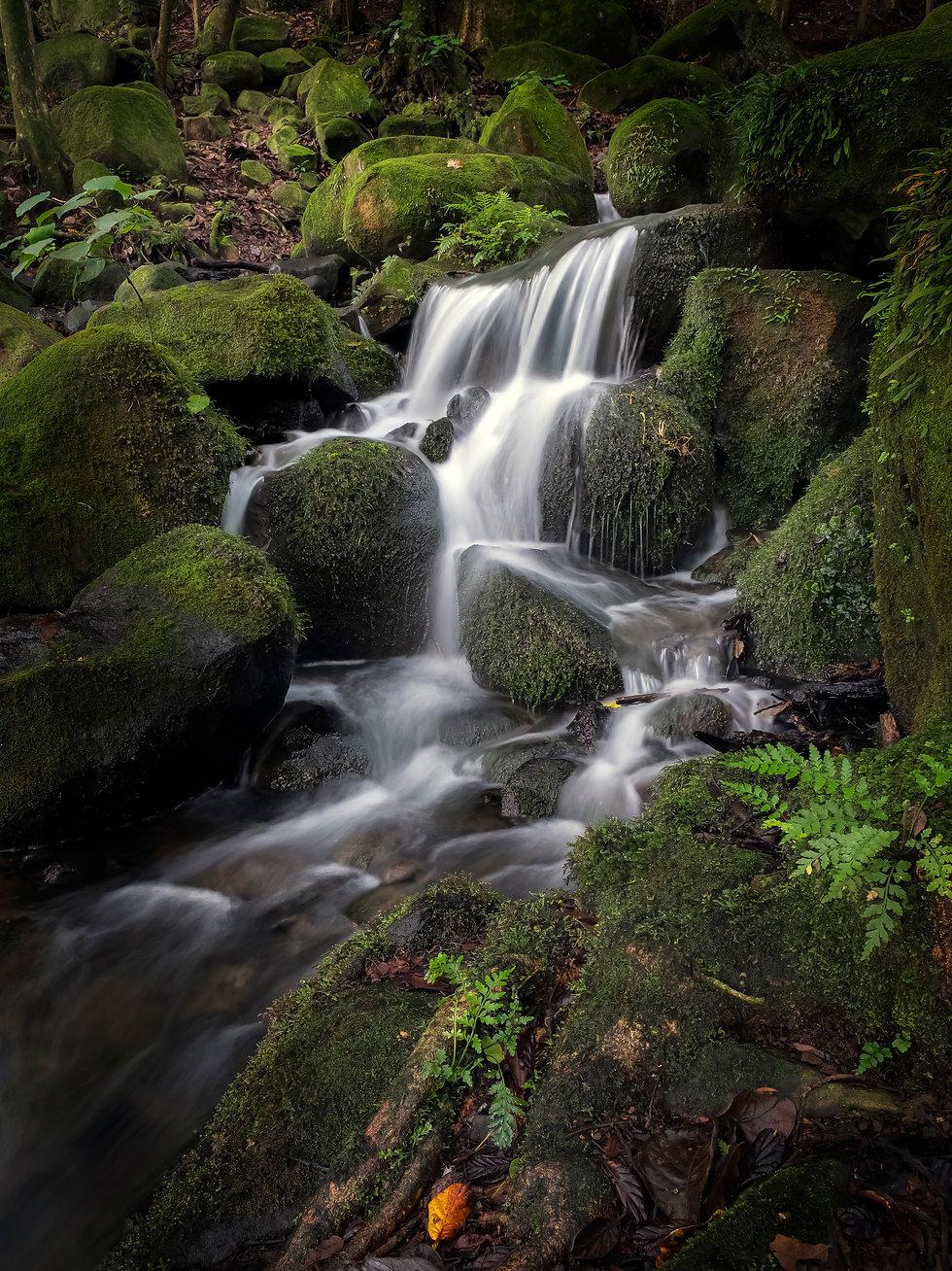 Small Waterfall Auckland.jpg