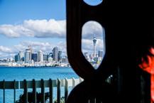Auckland Windows by Alvaro Uribe