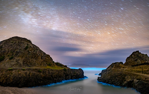 Te Arai Point by Grant Birley