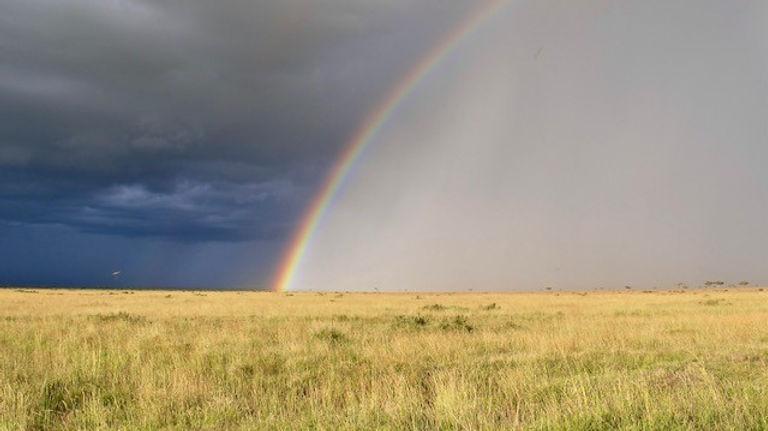 Alison rainbow.jpg