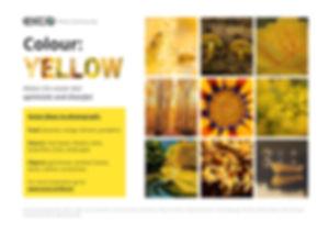 Yellow cards.jpg