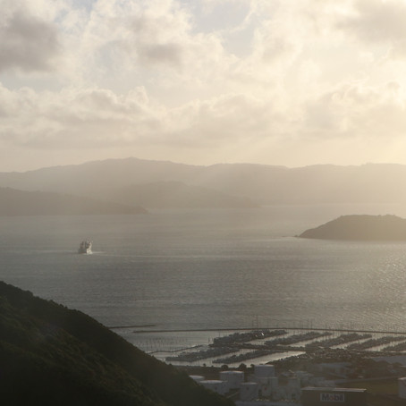 """Photo Review of """"Misty Harbour"""" - Learning About Lens Flare"""