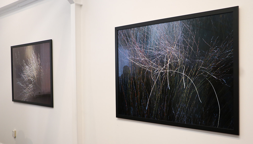 From Waitangi series, by Gil Eva Craig, exhibition at Photospace Gallery