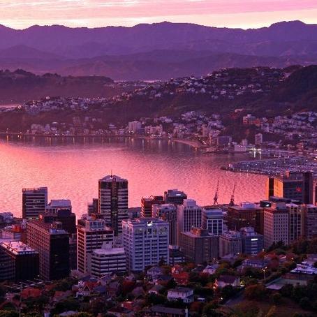 What Makes Wellington – Wellington?