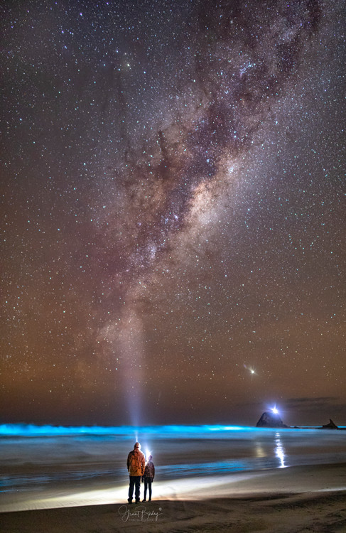 Father and Son Bioluminescence by Grant Birley