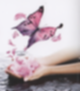 butterflyflowerlogo.png