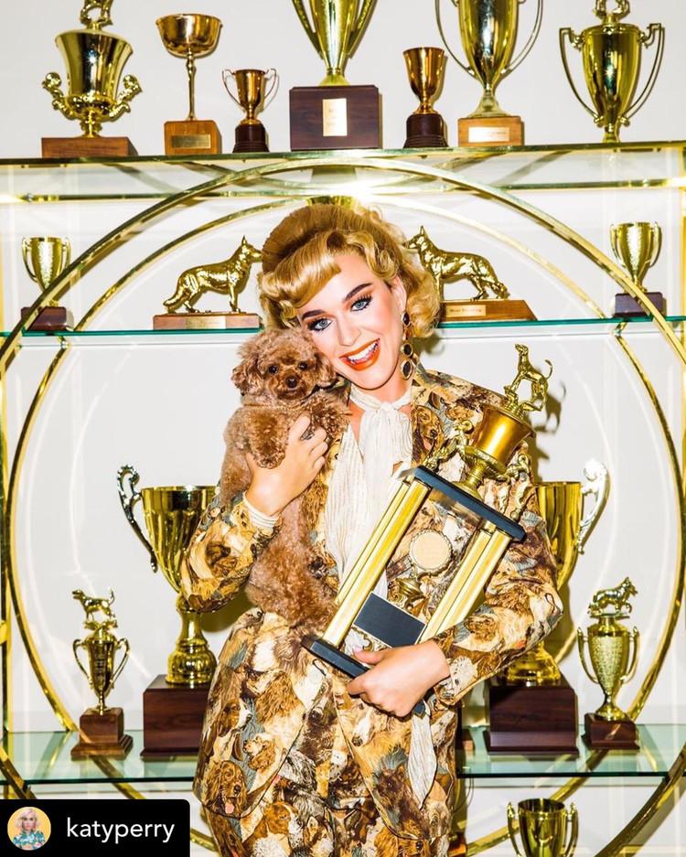"""Katy Perry """"Small Talk"""""""
