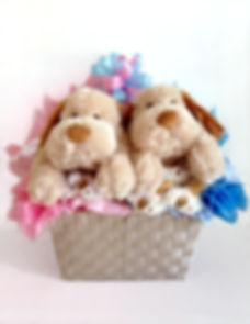 New baby twins gift basket