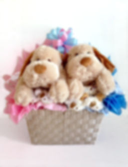 New baby twins gift basket