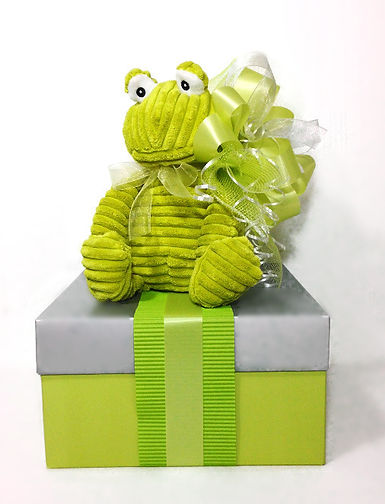 Green frog new baby gift boxes for twins