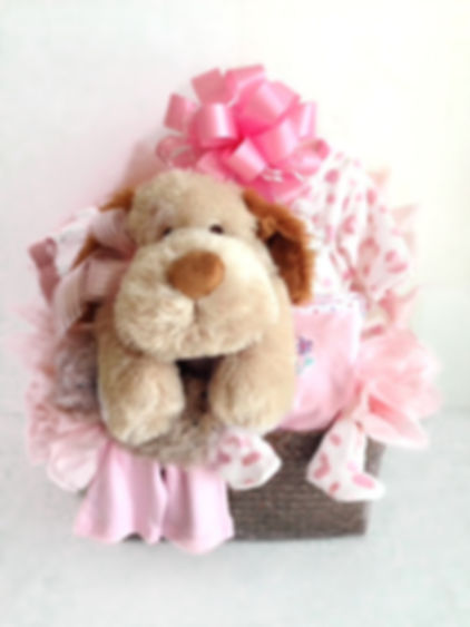 Plush Puppy baby girl arrangement