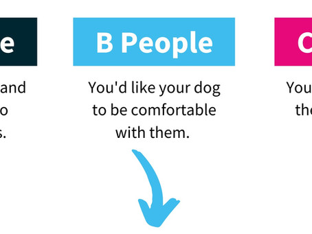 Your Dog's World: A, B, and C People