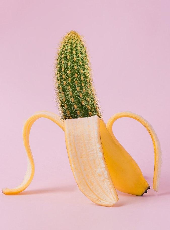 Suchen_Finden_Kaktus_in_Banane.jpg