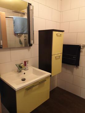 Gäste-WC Dusche.jpg