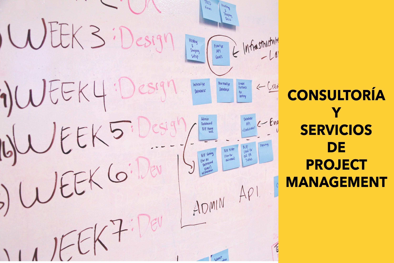 Consultoría y Servicios de Project Management | FOCUS Managing & Consulting Panamá