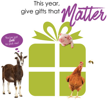 Gifts that Matter for Christmas