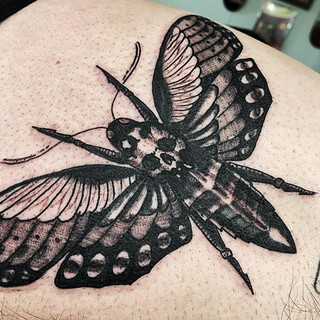 Blasted this moth out on my homie tonigh