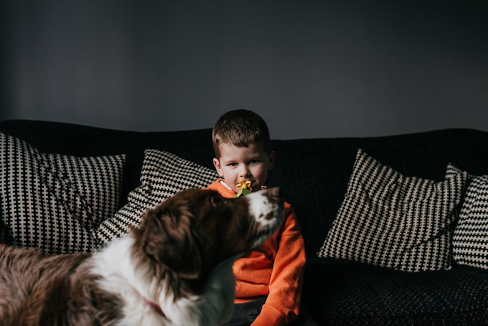 little boy and dog on sofa
