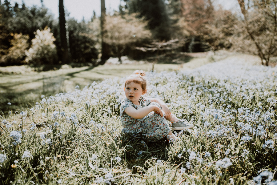 bluebells family photographer