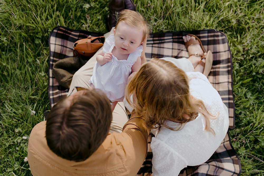 aerial shot of newborn with family picnic