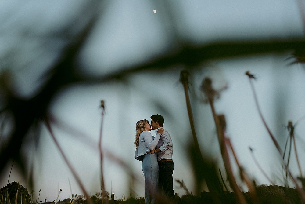 dandelions in field with wedding couple