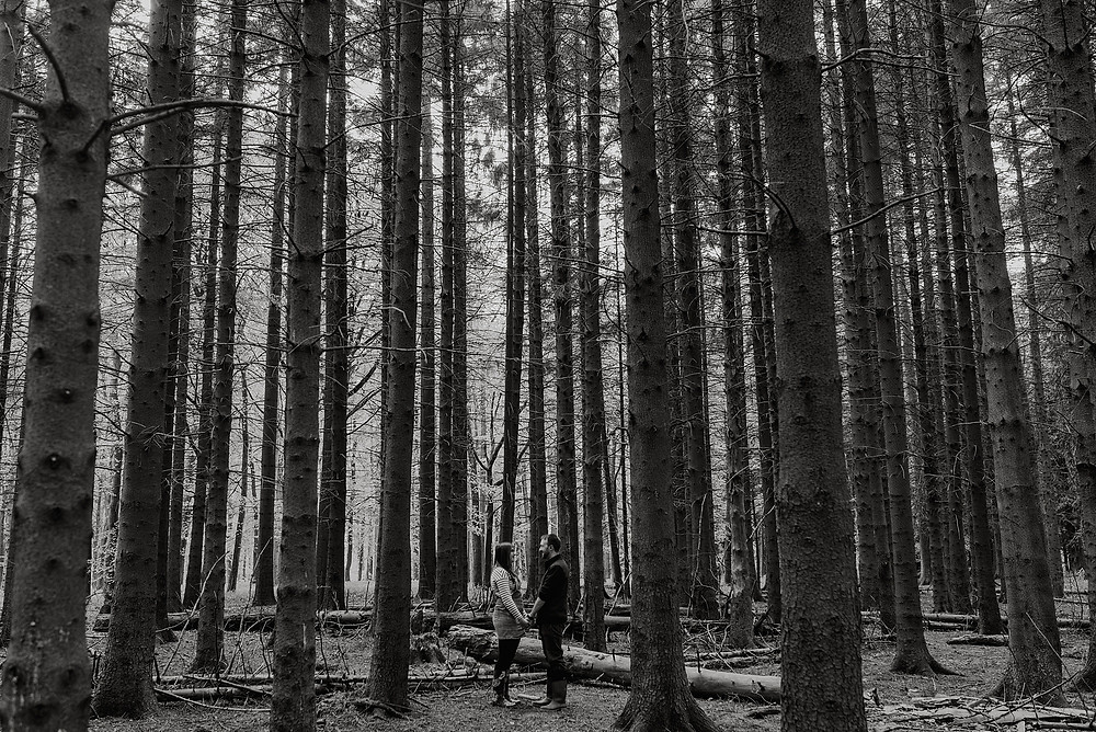 cool couple in woodland pre wedding photo
