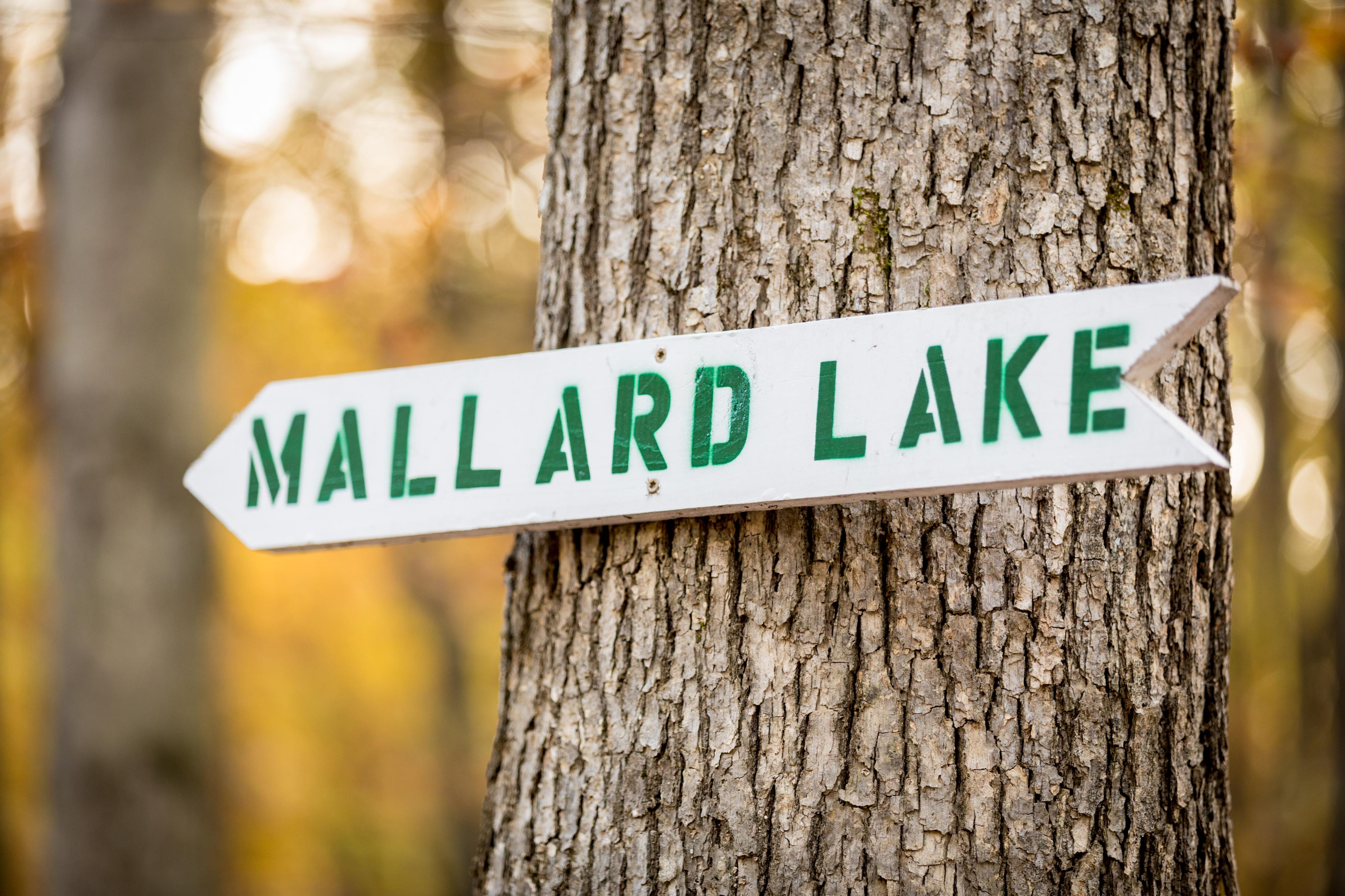 Mallard Lake Sign at Escape Village