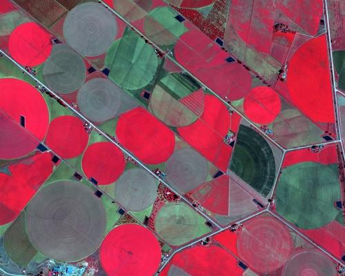 Agriculture Centre Pivot NIR Imagery