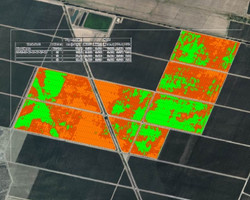 Viticulture NDVI Mapping