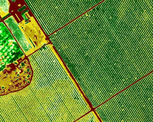 Multispectral Agric NDVI Mapping