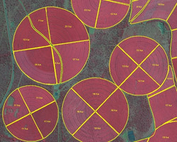 Sugar Cane GIS Compartment Mapping