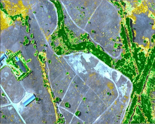 Environmental NDVI Mapping