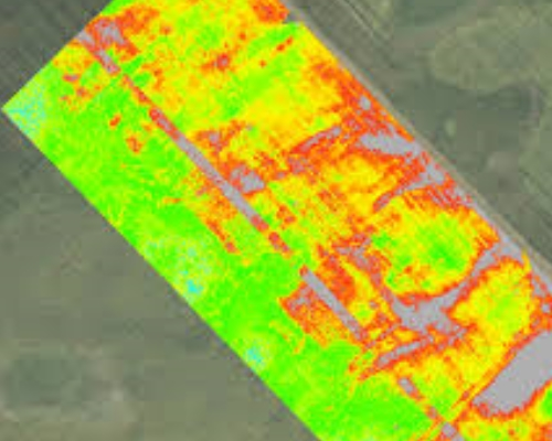 Agric Aerial Infrared Thermal Survey