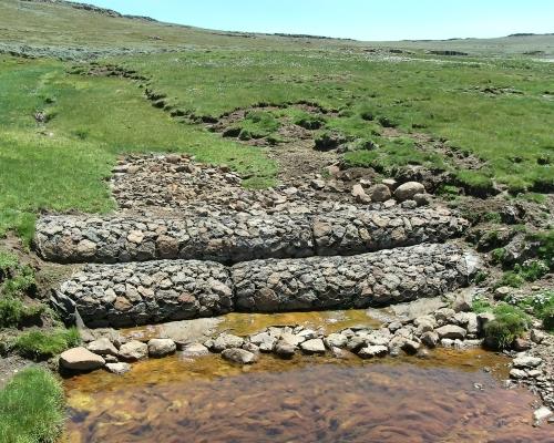 Agricultural Wetland Rehabilitation Gabions
