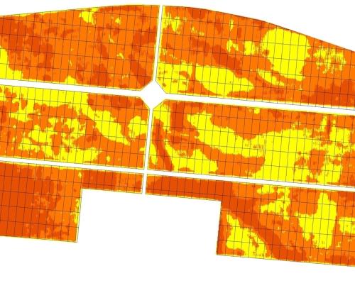 Vineyard NDVI Mapping