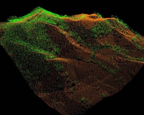 Forest LiDAR Survey