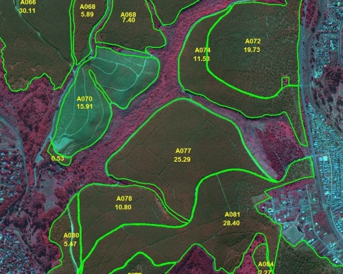 Forest Compartment Mapping