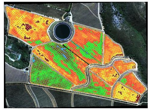Multispectral NDVI Vineyard Mapping