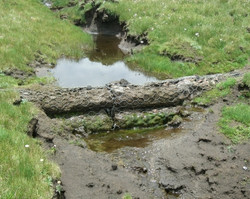 Agricultural Wetland Rehabilitation