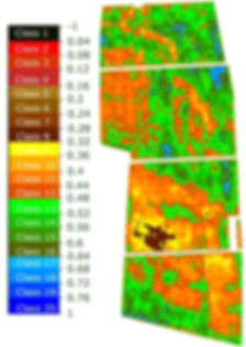 Calibrated Normalised NDVI Mapping